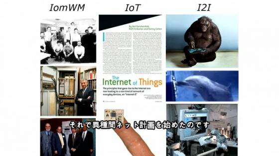 ダイアナ・ライス 動物種間インターネット?進行中のアイディア